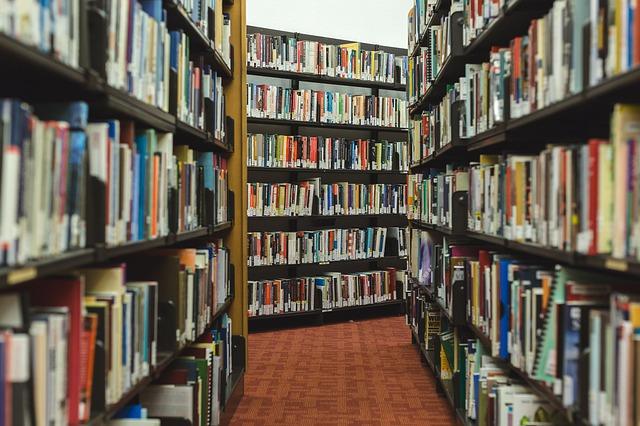 bibliothèque prison